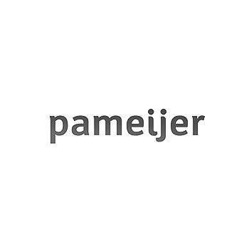 Pameijer (best practice)
